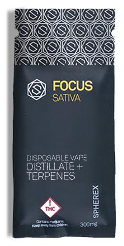 Focus Sativa